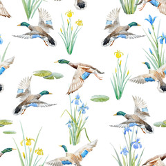 FototapetaWatercolor pattern with ducks