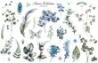 Leinwanddruck Bild - Big Set watercolor elements - wildflowers, herbs, leaf. collection garden and wild herb, flowers, branches.  illustration isolated on white background, eucalyptus, exotic, tropical leaf.