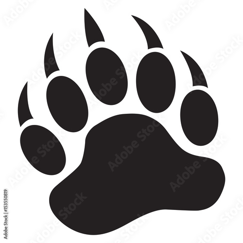 Photo  Bear Paw with claws