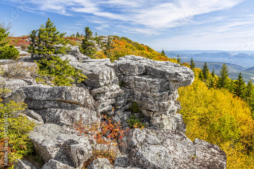 Photo Fall Color at Bear Rocks - at The Dolly Sods Wilderness in the Allegheny Mountai