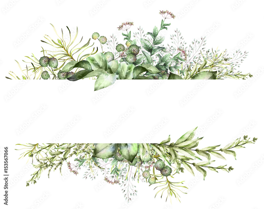 Fototapety, obrazy: Card, Watercolor invitation design with herbs and leaves. Hand painted floral background. Template. green  Frame. drawing nature