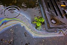 Petrol Oil Running Down A Gutt...