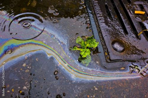 Fényképezés  Petrol Oil Running Down a Gutter Drain