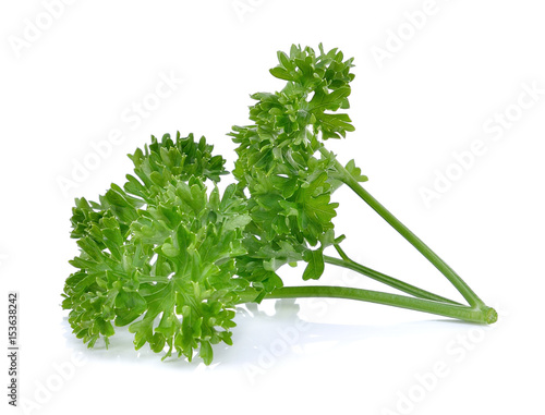 Fotografía  Parsley herb isolated on white