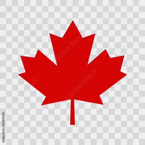 Canada leaf Canvas