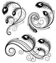 Peacock Feather Swirls Design Elements. Vector Illustration.