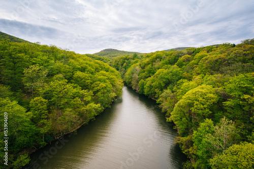 Fotografie, Tablou  View of Popolopen Creek, at Bear Mountain State Park, New York.
