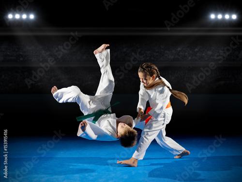 Fotografie, Obraz  Little children martial arts fighters