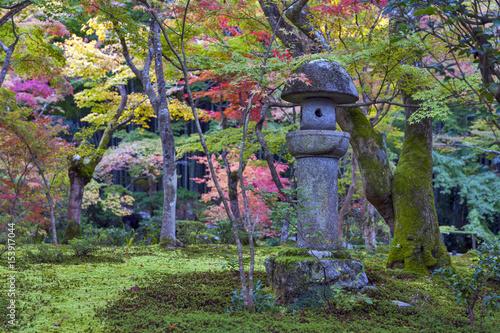 Foto op Canvas Zen Kasuga doro or stone lantern in Japanese maple garden during autumn at Enkoji temple, Kyoto, Japan