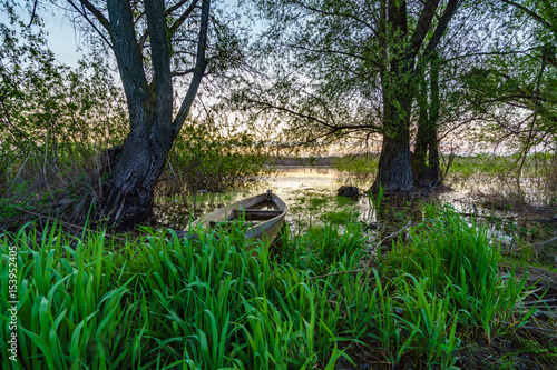 Foto op Plexiglas Groene A misty summer morning on the river or lake. Old rough wooden fishing boats on green grass and water, sunrise, fog. Lonely calm mood nature concept. Copy space, horizontal wallpaper or background.