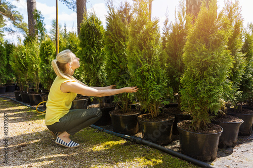 woman choosing coniferous tree at outdoor plant nursery