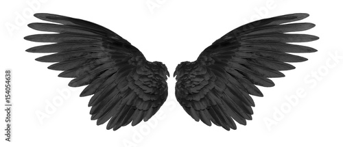 Foto  black wings on white background