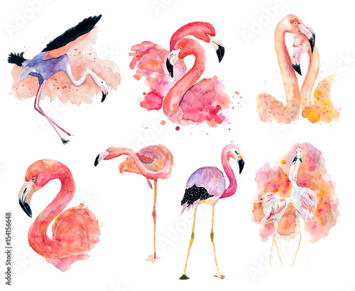 Fotobehang Flamingo vogel watercolor pink flamingos
