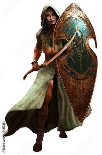 Foto  Elf warrior