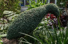 Huge Kiwi Statue Made Of Leaves And Flowers