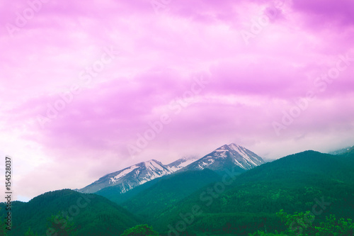 Foto op Plexiglas Purper Photo depicting a beautiful colorful amazing mountain meadow paradise landscape, summertime. European alpine mountains bathed in sunshine on a blue sky background.
