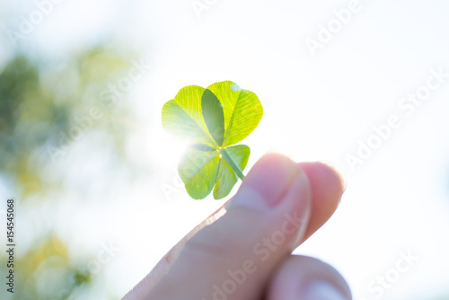 Photographie  四つ葉のクローバー