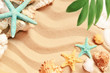 Sea shells and palm on the sand background. Summer beach.