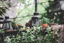 Vintage Decoration Style Of Garden With Small Pot And Plants.