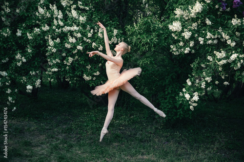 Fotografie, Obraz  Young woman in white tutu dancing in the green flowers landscape