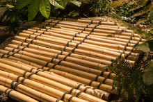 Brightly Lit Bamboo Mat Among Leaves And Ferns In A Garden