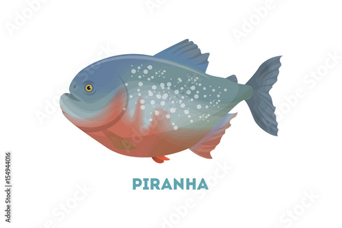 Fotografie, Obraz  Isolated piranha fish.
