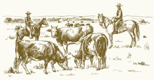 Cattle Drive By Two Cowboys. Cows Grazing On Pasture. Vector Illustration.
