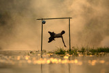 Fototapeta Sport - Action shot soccer silhouette  boy jumping kick football on the river