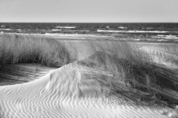 Fototapeta Morze Poland, Leba, Baltic Sea - Beautiful sandy beach