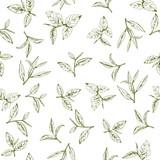 wzór z zielonej herbaty, ręcznie rysowane liście i gałęzie herbaty - 155008807