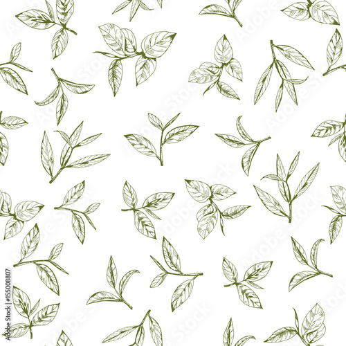 seamless-pattern-with-green-tea-hand-drawn-leaves-and-branches-of-tea