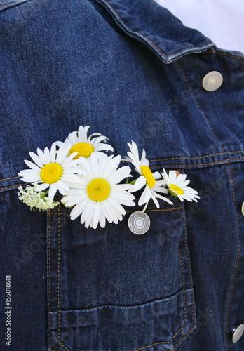 Papiers peints Marguerites bouquet de marguerites dans une poche de veste en jean,