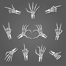 Skeleton Hand Signs Isolated O...