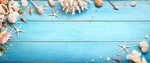 Seashells On Blue Wooden Background - Beach Concept