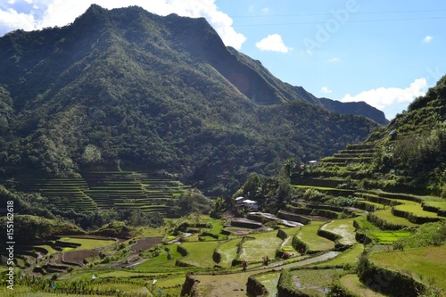 Photo Stands South America Country Banaue Rice terraces & jungle