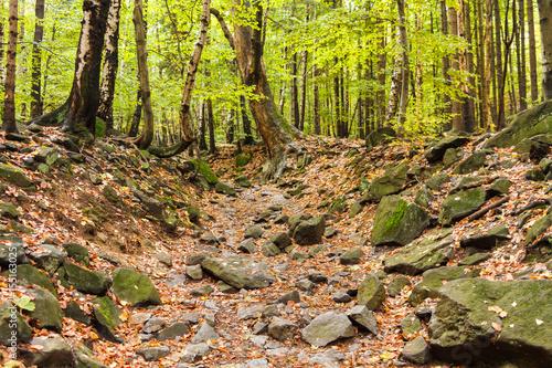 Fotografie, Obraz  Kamienista trasa pod górę