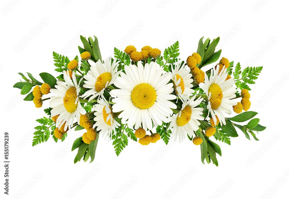 Daisy flowers arrangement