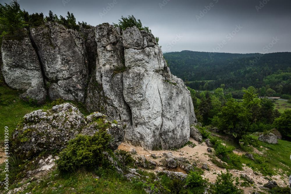 Limestone rocks in nature reserve mountain Zborow in Jura Krakowsko-Czestochowskiej, Poland