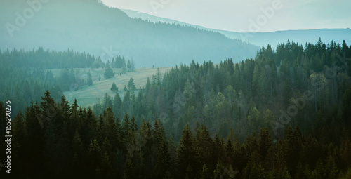 Poster Morning with fog Landscape of great mountains in spring in the cloudy day