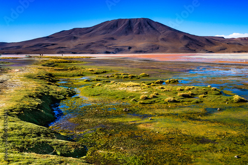 Foto op Aluminium Aubergine Lagoon Bolivia