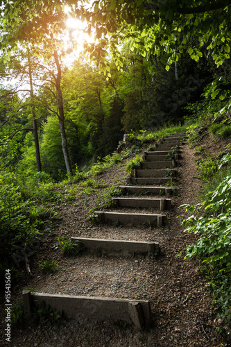 Tuinposter Weg in bos Stairs going up hillside in green forest toward sunset