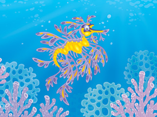Fototapeta na wymiar Exotic leafy sea dragon among corals on a tropical reef
