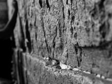 Side View Of Huge Stones Of The Wailing Wall With A Lot Of Prayer Paper Notes Inserted Between Two Stones. On The Side We See A Hand Of A Prayer - Black And White
