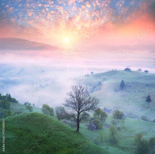 Poster Rose clair / pale Lazeyschina Lazeshchyna village in the mist