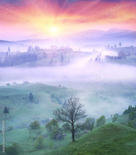 Tuinposter Purper Lazeyschina Lazeshchyna village in the mist