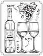 A set of wine bottles, wine glasses and grapes. Vector isolated Illustration.