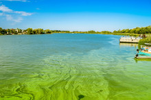 Green River Waters With Algal Bloom