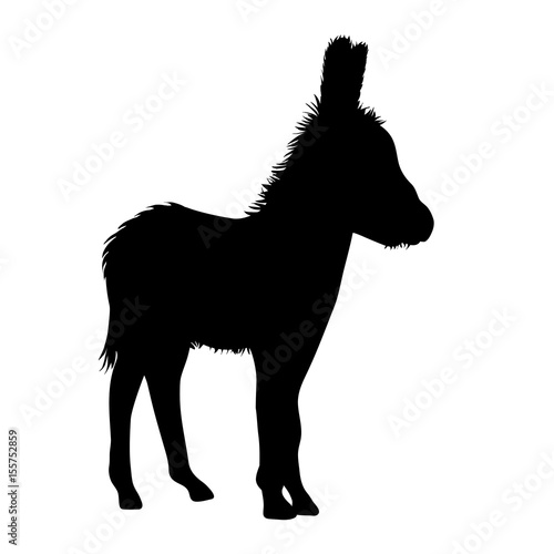 Fotomural Vector silhouette of donkey on white background.