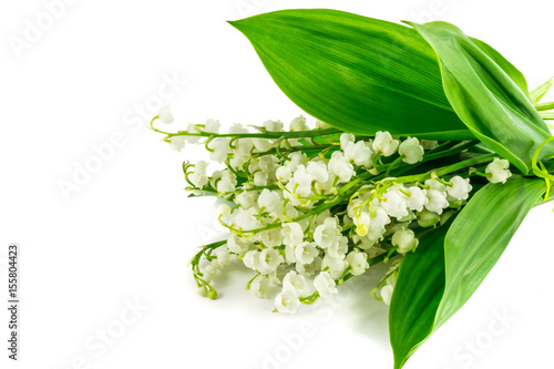 Wall Murals lily of the valley flowers on white background. Postcard, cover, card