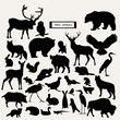 Vector silhouette of wild animals